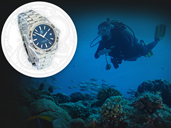 What Luxury Watch Best Suits Your Profession