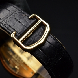 CA20004S Cartier Roadster Close4
