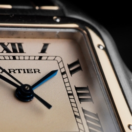 CA21610S Cartier Panthere Close 5 1