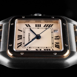 CA21610S Cartier Panthere Close 6 1
