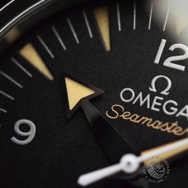 OM20743S_Omega_Seamaster_300_Master_Co_Axial_Close5.jpg