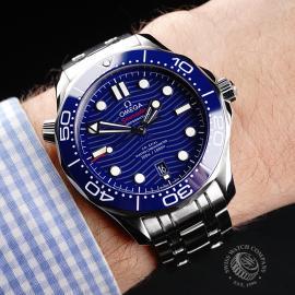 OM22144S Omega Seamaster Professional 300M Wrist