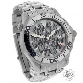 OM22352S Omega Seamaster Professional Titanium Dial 1