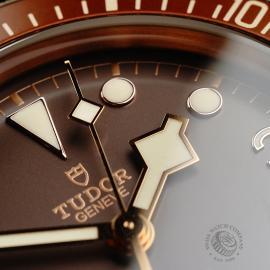 TU22007S Tudor Heritage Black Bay Bronze Close5